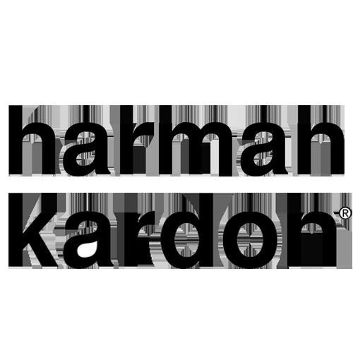Action Mobile Jordan Harman Kardon